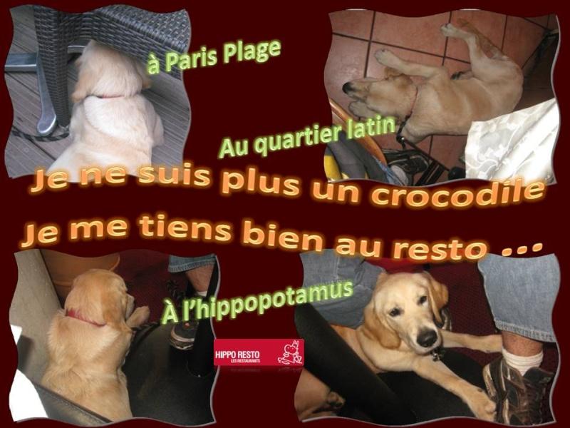 Dima Amis Il Une Était Fois ynwOPN08vm
